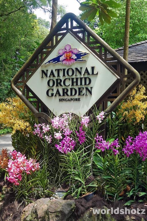Orchideen-Garten
